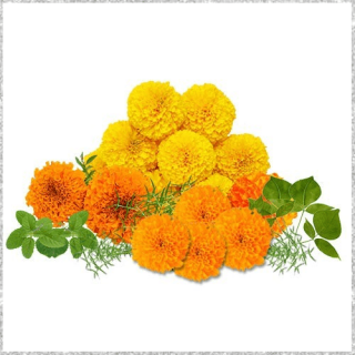 Loose flowers for pooja